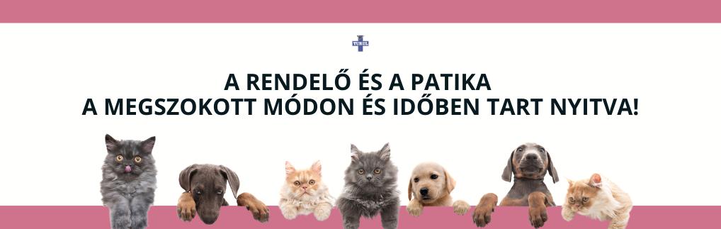 Turul Állatorvosi Rendelő és Patika Aszód